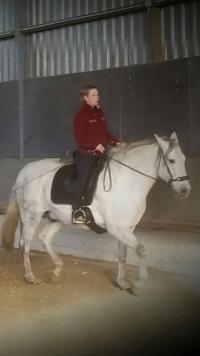 Daniela V. auf Ihrem Pferd Hidalgo mit Iberosattel
