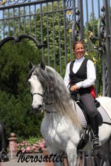 Iberosattel auf spanischem Pferd