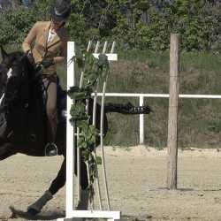 Lisa E. mit Iberosattel auf PRE Gorrion bei der Working Equitation
