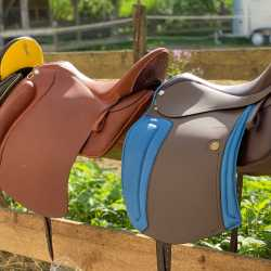 Our exhibition saddles - highlights 2020