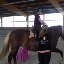 Mareike F. & Mira: Sevilla Reitsattel für Jungpferd - Kaltblut