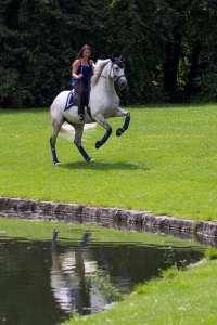 Saddle on spanish sport horse