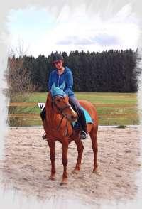 Arabian mare Gui with Iberosattel
