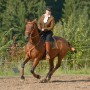 Working Equitation mit Iberosattel