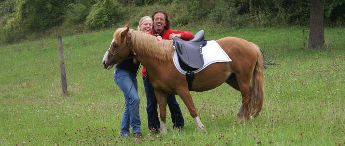 Ponys en kleine paarden